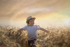 The Farmer (Windermere Images) Tags: play dream clouds england fields sky light sunset love fun boy child farm harvest barley summer