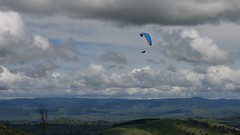 Allister climbing out (overflow50) Tags: paragliding paraglider canberra spring springhill sky clouds
