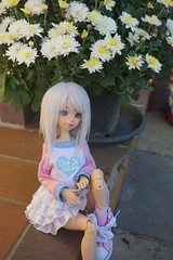 Nature 01 (raciele) Tags: atelier momoni bjd balljointeddoll ball jointed doll dolly cute kawaii sweet fairy kei mori