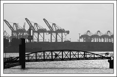 Monochrome Port of Hamburg (kurtwolf303) Tags: hamburg monochrome port hafen harbour harbor bridge cranes krne elbe water wasser olympusem1 omd microfourthirds micro43 systemcamera people brcke unlimitedphotos flickrelite germany deutschland 250v10f topf25 500v20f topf50 topf75 topf100 1000v40f