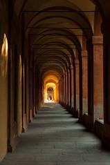 Bologna (Eleonora Sacco | Pain de Route) Tags: via degli dei turismo toscana emilia romagna bologna firenze appennino betulle