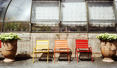 take a sit (joanna.kf) Tags: chair chairs sit takeasit lyon france canonet canonetql19 orange yellow red park takearest analogue