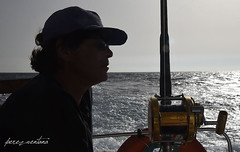 Aguardando la picada (Quico Prez-Ventana) Tags: pescadeportiva curricn biggamefishing atnrojo estrecho gibraltar penn josantonioortizsabido pescador