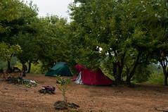 Our tents around Monzuno (Eleonora Sacco   Pain de Route) Tags: via degli dei turismo toscana emilia romagna bologna firenze appennino betulle