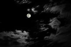 _MG_0202 (s4rgon) Tags: moon nature night clouds mond dresden nacht natur wolken