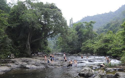 Khách du lịch bên cây đa tình ở Khe Rỗ.