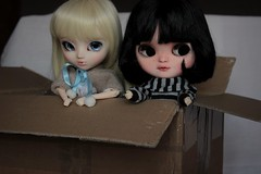 Welcome girls !  (Loony-Doll) Tags: doll dolls makeup full wig orion groove pullip blythe icy custom fc custo poupe obitsu eyechips junplanning ninadoll customise icydoll polkadollsfabrics