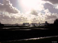 Nieuwendam Amsterdam Noord 16-2-14 (kees.stoof) Tags: amsterdam backlight tegenlicht noord nieuwendam oostelijkhavengebied