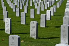 Veterans - Houston, Tx (pzocchi) Tags: eos 7d veterans cemetery rip usa houston texas canon afternoon sigma nationalgeografic ngc travel memories gvf
