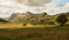 Langdale (Graham - bell) Tags: trees nikon harrison side cumbria pikes pike stickle