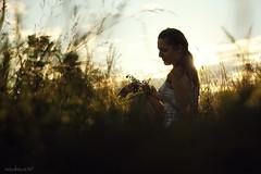 Summer' twilight (Dasha May) Tags: girl portrait nature sunset twilight summer grass flowers evening sky russia