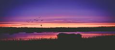 SUNSET (G Mortuja) Tags: sunset beauty night espoo suomi finland landscape nice helsinki nikon dusk uusimaa dwan d7100