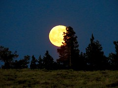 Prairie moon (prairiegirrl) Tags: summer moon green rising solstice wyoming mountainfull
