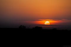 Countryside sunset (michaelraleigh) Tags: sunset sun green field minnesota canon landscape windfarm windpower windgenerator albertlea 100300mm f56l