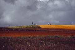MM**** (MoiseM) Tags: field rain landscape paisaje valley