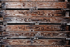 Wine Wood, Italy 2016 Nicola Nigri (Lifeinpicture) Tags: wood italy detail texture lines nikon wine nikkor