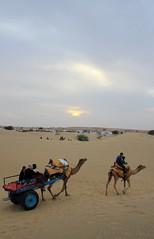 Local v/s Foreign tourist (DJ SINGH) Tags: sunset india castle sunrise canon sand sam desert safari camel jaisalmer thar rajasthan