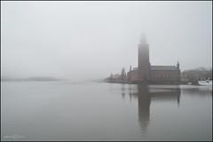 Rainy Stockholm. (p@sco) Tags: travel lake rain fog lago sweden stockholm sverige nebbia pioggia stoccolma svezia viaggiare stockholmcityhall citizenoftheworld cittadinodelmondo