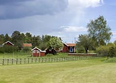 Summer Is Nearly Here (Steffe) Tags: houses fence sweden lawn haninge idyllic gärdesgård nyländagård roundpolefence årstahavsbadsvägen nylända