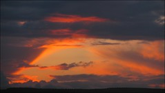 Evening in May (Dave Roberts3) Tags: orange landscape coth supershot citrit naturethroughthelens