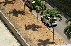 (r e z a se z e z a) Tags: mountain streets beach nature beautiful fashion architecture marina dark palms temple bay sand singapore asia muslim petronas towers hills malaysia monkeys cave langkawi hindu