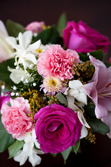 Floral Beauty (Norman H.) Tags: pink flowers roses stilllife color cute floral beauty photography pretty pattern bouquet carnation carnations