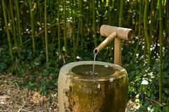 Fontaine en bambou (Jacq-R) Tags: construction concret maulvrier parcoriental jardinparcdcoratif