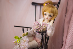 May  (Muri Muri (Aridea)) Tags: cute may super bjd vs dollfie volks abjd msd sdc