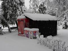 Coca-cola (cod_gabriel) Tags: winter snow romania bucharest bucuresti bukarest roumanie boekarest bucarest iarna zapada romnia bucureti ninsoare zpad iarn bazilescu bucareste parculbazilescu parcbazilescu