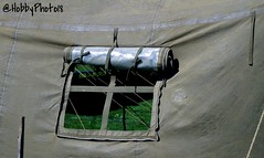 Open (hobbyphoto18) Tags: camp france window pentax military tent fabric memory nordpasdecalais fentre militaire toile tente campement tissu mmoire k50 secondeguerremondiale cappellebrouck pentaxk50