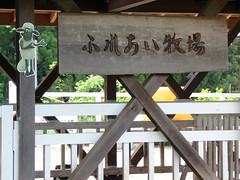 #8118 sign: petting farm () (Nemo's great uncle) Tags: saitama  chichibu      yokoze   hitsujiyamapark shibazakurahill