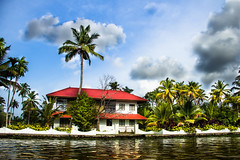 Keralam Backwaters (Freddy Victor) Tags: trees kerala picturesque backwaters