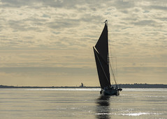 Early Start 2 (Eddie Hyde) Tags: thames barges racing sailing thamesestuary