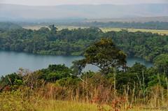 Le lac bleu, Réserve de la Lesio-Louna, CONGO - 28/05/2016 (brun@x - Africa: birds & more) Tags: africa forest landscape nikon african congo paysage bruno hdr forêt afrique brazzaville lacbleu riperine d700 ripicole lesiolouna brunoportier forêtripicole