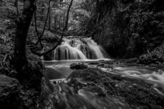 Waterfall Schliersee 7 bw (xdbooking) Tags: blackandwhite water forest river germany bayern bavaria waterfall wasserfall waterfalls schliersee josefstal xdarts