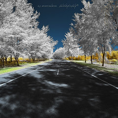 Salam Jumaat 26 Ramadhan 1437H (sirman88) Tags: road wood light red panorama white motion tree grass stone fence dark interestingness sand alone dry fisheye glorious malaysia infrared shelter goldie dying pointing f8 leading terengganu fbe revisited bangunan traveldestinations incompatible balikkampung salamlebaran sirman photographyoutdoors azmanrahman sirman88 duringfbecourse