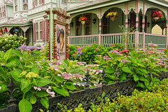 The Empress (thetrick113) Tags: summer fence garden iron victorian shore porch empress hdr ironfence victorianhouse hangingbasket 2016 pasteles newjerseyshore capemaynewjersey woodsiding pastele capemaycountynewjersey empresshouse summer2016 sonyslta65v