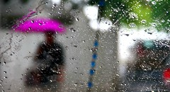 Rain in Colombo (Mahmoud R Maheri) Tags: street urban woman rain silhouette umbrella colours srilanka windscreen colombo