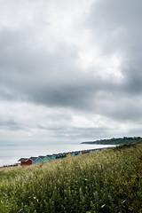 Minster Beach Huts (T_J_G) Tags: sea cloud storm beach wet water grass landscape view cloudy huts d750 20mm minster sheppey