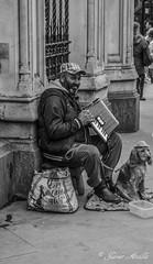 Musica en Blanco y negro..... (Javier Arcilla) Tags: blackandwhite blancoynegro blanco calle pentax negro musica 1855mm mascotas k50 monocromatico pentax1855mm pentaxk50