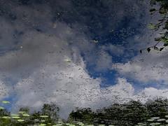 Le monde est  l'envers du dcor (CcileAF) Tags: blue sky colour nature clouds canon reflections countryside pond