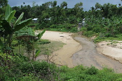 Sandy river (I.M.W.) Tags: bangladesh srimangol sylhet water river sand green jungle forest geology earthscience rock landscape rainyseason wetseason asia
