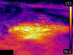 Thermal image of Plume Geyser (morning, 11 June 2016) 1 (James St. John) Tags: plume geyser hill group upper basin yellowstone hotspot volcano wyoming hot springs thermal image temperature