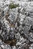 IMG_0327.jpg (KevinAirs) Tags: kevinairs442 australia boulders clairelakescradlemountainnationalpark countryside cradlemountain lichen mist moss rugged stony tasmania tectures textures worldheritagearea ©kevinairswwwwordsandpixcom availabletobuyatwwwkaozcomau