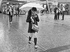 Texting In The Rain (bidkev1 and son (see profile)) Tags: street camera portrait people urban art monochrome rain umbrella photoshop canon mall lens asian photography eos photographer candid australian streetphotography photojournalism lifestyle places brisbane photographic queen portraiture leisure schoolgirl digitalphotography texting blackandwhitephotography professionalphotography stockphotography alternativelifestyle candidphotography photographicequipment artphotography documentaryphotography stilllifephotography eventphotography hdrphotography australiatravel fineartimages canonequipment photographicprints streetphotography imagesofaustralia photographictools imagesofqueensland canonphotography photographywithcanonequipment candidphotography documentaryphotography buystreetphotography urbanphotography cityphotography beachphotography peoplephotography kevindickinsonfineartphotography