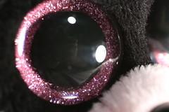 Detail of a Pink Raccoon Eye (FilmandFocusPhoto) Tags: pink white selfportrait black macro eye glitter canon fur 50mm lights sigma plastic todayspic macrophotography reddit noprocessing photoshopfree macrounlimited macrodreams redditgifts