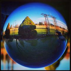 #crystalball, #andrewto21, #Toronto, #gta, #crystal, #torontophoto, #TorontoPhotography, #blue, #beautifulontario, #canada (AndrewTO) Tags: blue toronto canada square crystal squareformat gta mayfair crystalball iphoneography instagramapp andrewto21