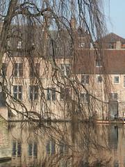 (alain_halter) Tags: eau belgique bruges arbre ville façade faade régionflamande