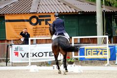 IMG_0616 (dreiwn) Tags: horse pony pferde pferd equestrian horseback reiten horseriding dressage hnger 2015 reitturnier dressur pferdekopf dressuur junioren ridingarena pferdesport doublebridle reitplatz reitverein pferdehnger kandare turnierreiten dressurprfung ldressur