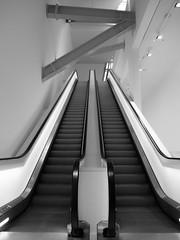Escalator (En route pour l'Italie ...) Tags: paris france mobile jesse louis noir belgique noiretblanc boulogne escalator roulant olympus reno blanc vuitton bois intrieur boisdeboulogne escaliers belge fondation escalierroulant escaliermobile photographebelge fondationlouisvuitton escalizer olympusomd5mkii jessewreno marquesescalator